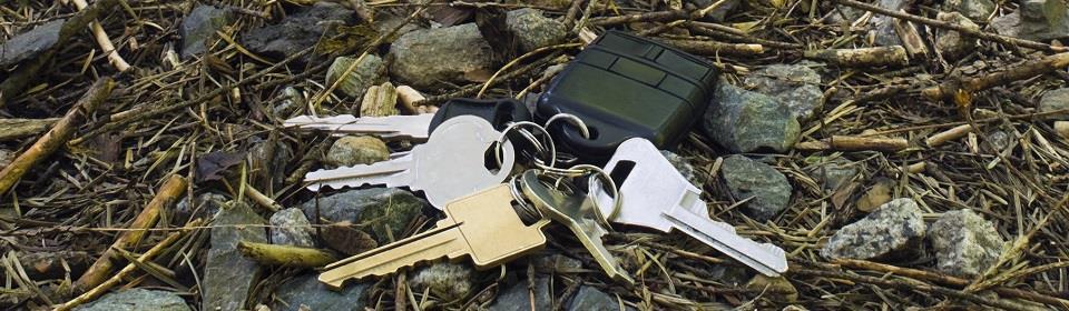 sleutels verloren in bos
